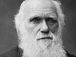 "Darwin wrote in The Descent of Man, ""If we were intentionally to neglect the weak and helpless, it could only be for a contingent benefit, with an overwhelming present evil. We must therefore bear the undoubtedly bad effects of the weak surviving and propagating their kind."""