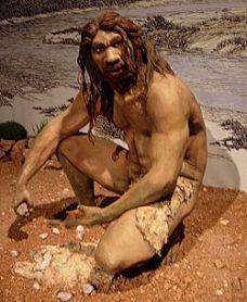 homo_heidelbergensis-wikipedia-com