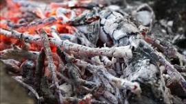 campfire (shutterstock.com)