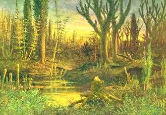Devonian ferns wikimedia