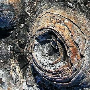 stromatolites layers pinterest